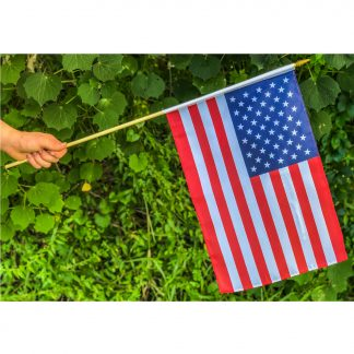 american flags on stick