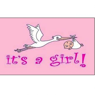 birth announcement flag for sale it's a girl 3x5 flag