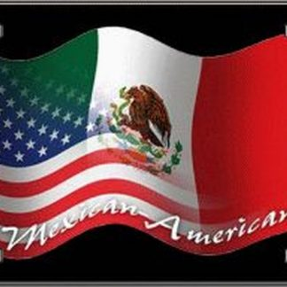 mexican-american license plate for sale