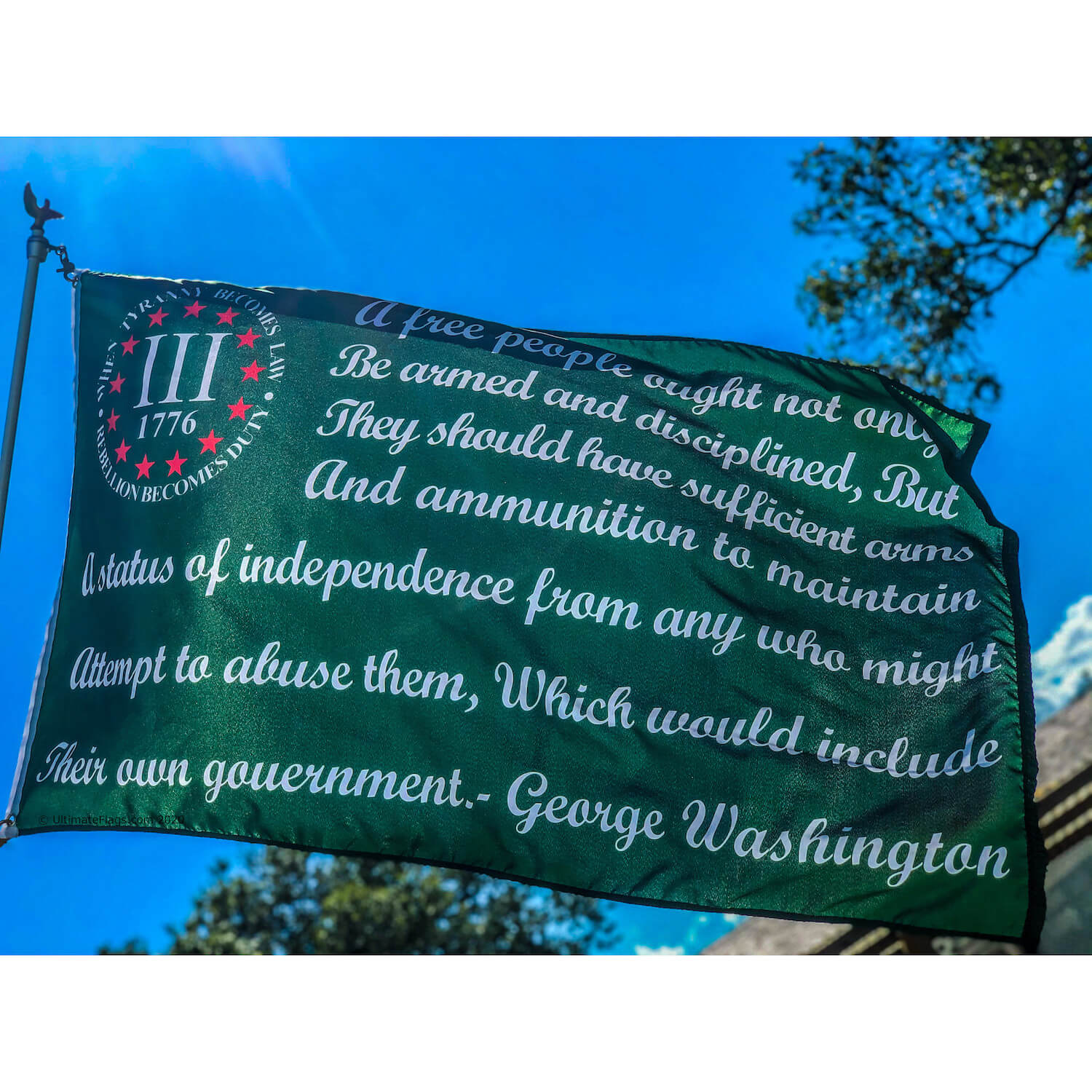 2nd amendment George Washington Bear Arms quote on flag