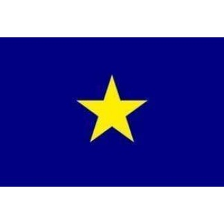 burnet's republic of texas flag